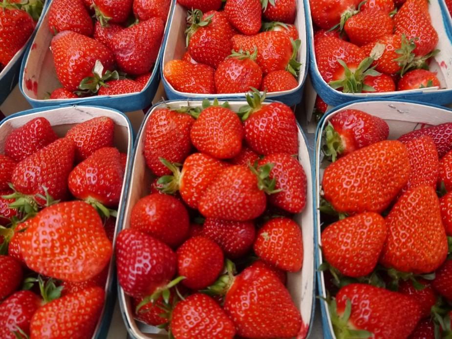 milk-shake fraise1
